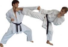 дитячий турнір з карате-до
